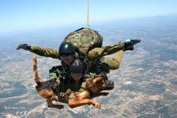 Собаки на службе в вооруженных силах Португалии