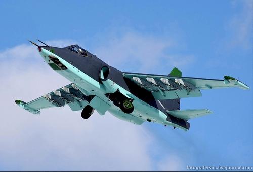 Су-25СМ3 (c) Марина Лысцева