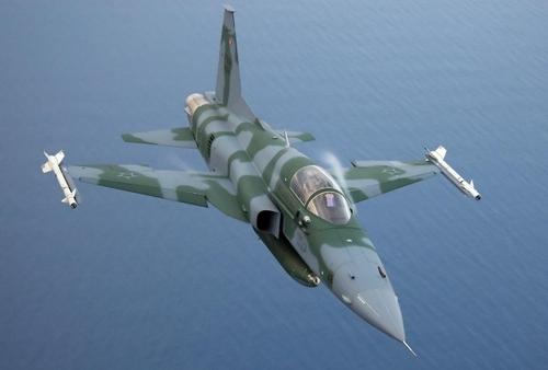 F-5EM/FM (c) psk.blog.24heures.ch