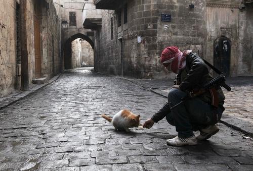 Боевик Свободной сирийской армии (c) REUTERS/Muzaffar Salman