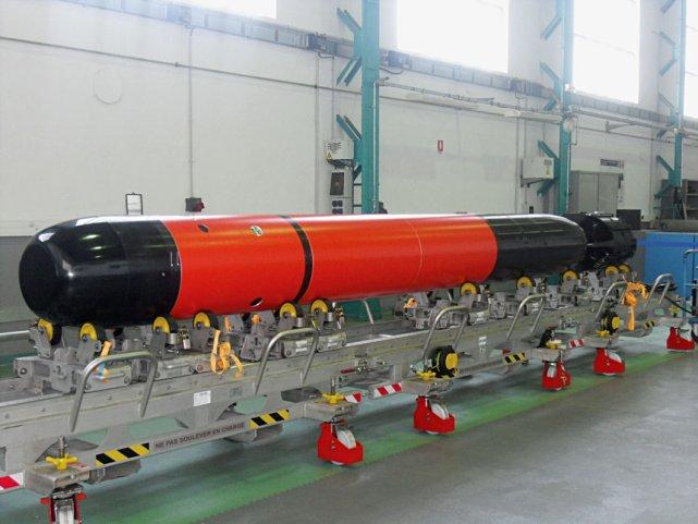 533-мм торпеда F21 (c) DCNS (via Jane's)