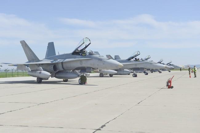 CF-188 Hornet (c) www.forces.gc.ca